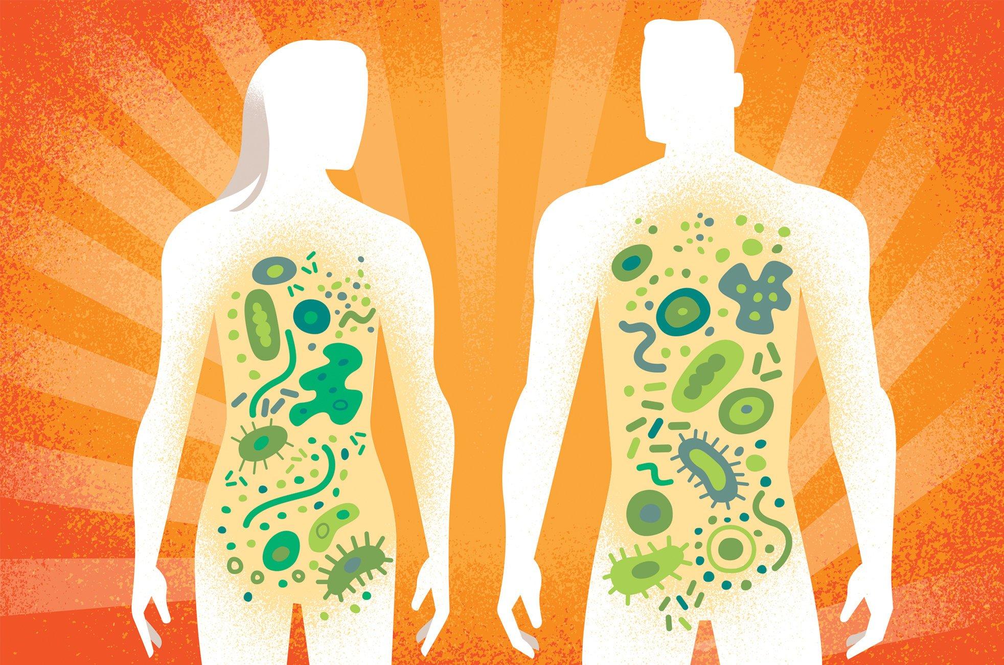 Genetika vagy életmód: Mi formálja a mikrobiom világunkat?