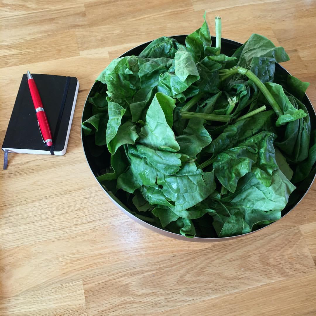 Drága a növényi táplálkozás?