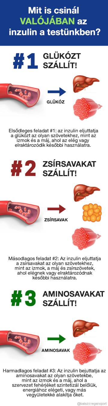 ketogén diéta inzulin