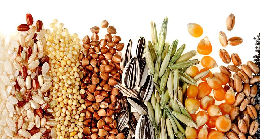 blog alacsony kalóriatartalmú és szénhidráttartalmú étrend