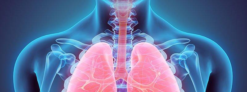 A növényi alapú étrend segít megelőzni és kezelni az asztmát