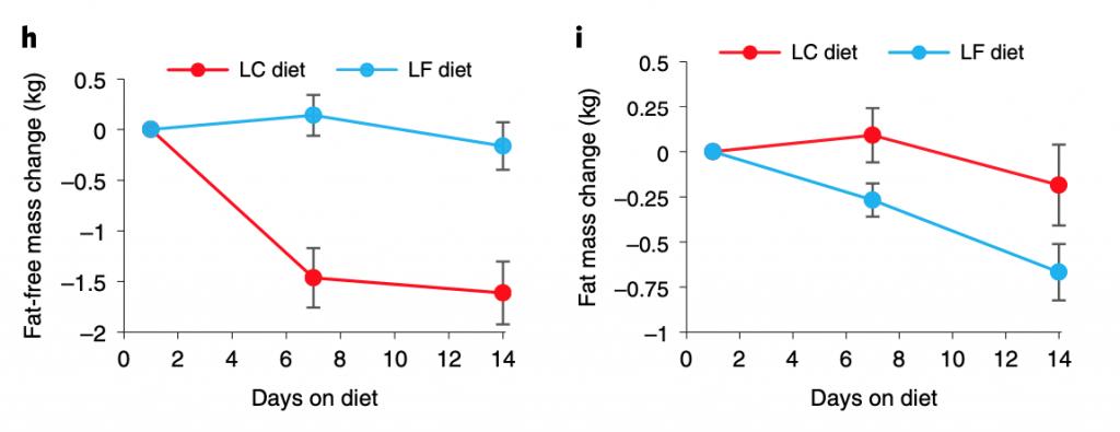 Zsírmentes testtömeg és a testzsír változása az adott étrendeken